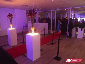 Woolworths gala dinner awards 2012 - red carpet and stanchions by AV Direct