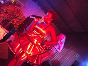 Dragonfly Africa entertain guests at the grand beach cafe - CODA